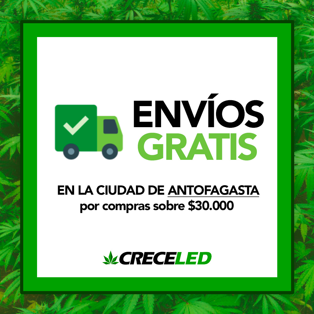 Envíos gratis a Antofagasta